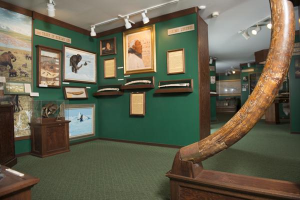 museum_blog-5865